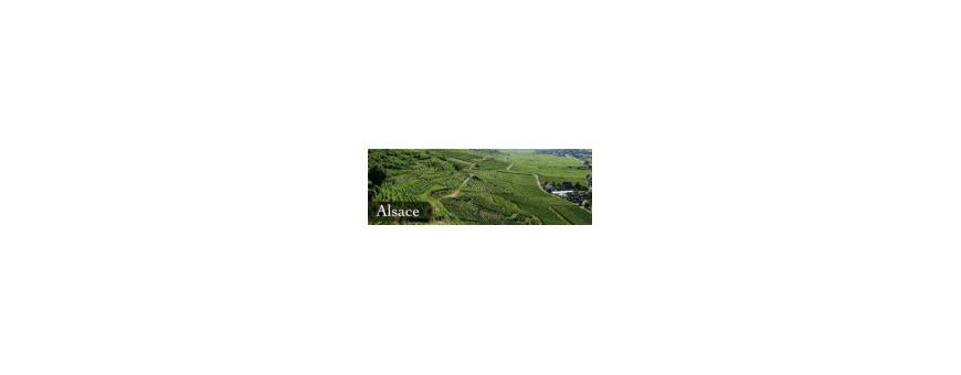 Les Chais bio : Nos vins d'Alsace