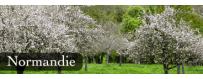 Les Chais bio : Nos produits de Normandie